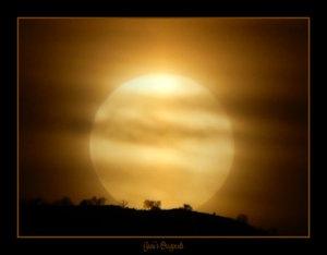 Werewolf__s_Night_by_piratazz