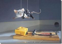 raton-queso